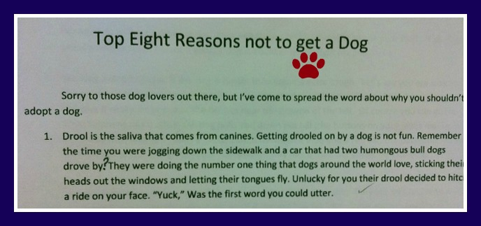 Top Eight Reasons Not To Eat A Dog Ironic Mom