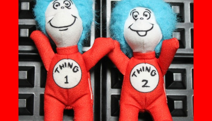 MISSING: Thing 1 and Thing 2
